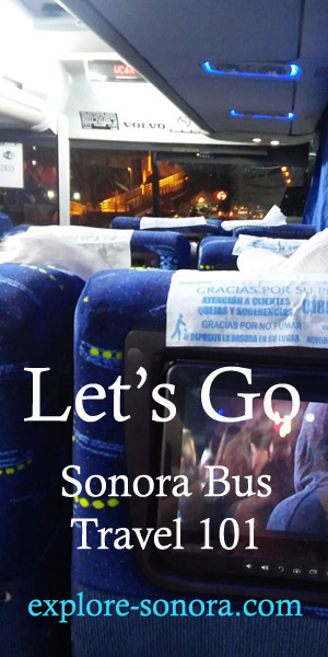 Learn How to Travel to Sonora by Bus - Sonora Bus Travel 101