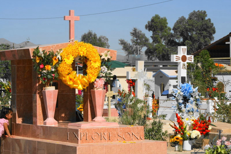 graves adorned on the day of the dead in sonora mexico