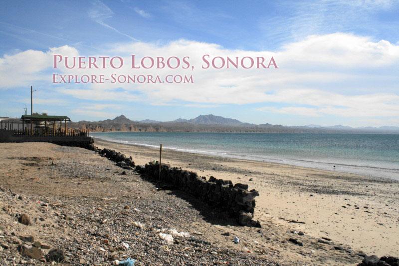 Puerto Lobos, Sonora