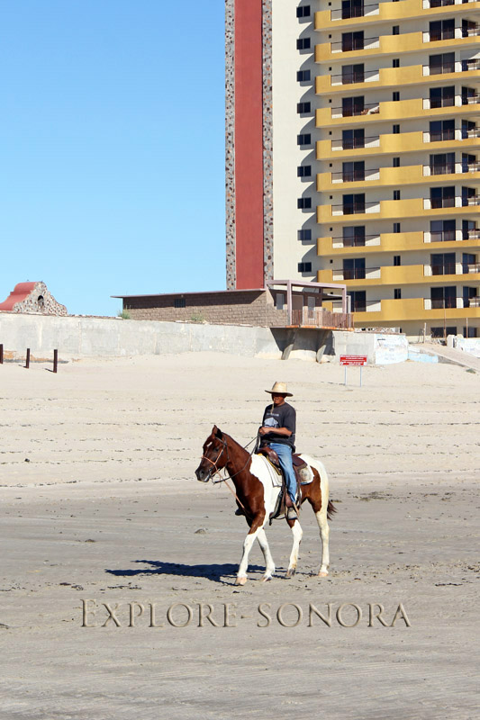Horseback riding on the beach in Rocky Point