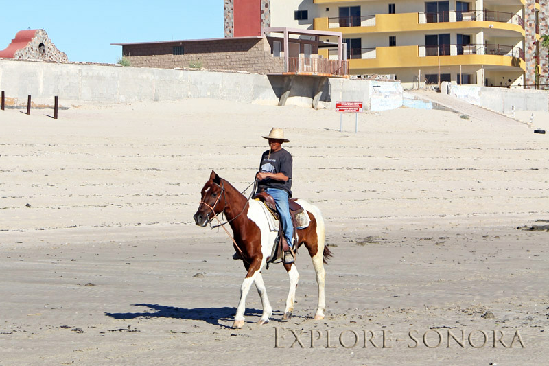beach horseback ride in puerto penasco