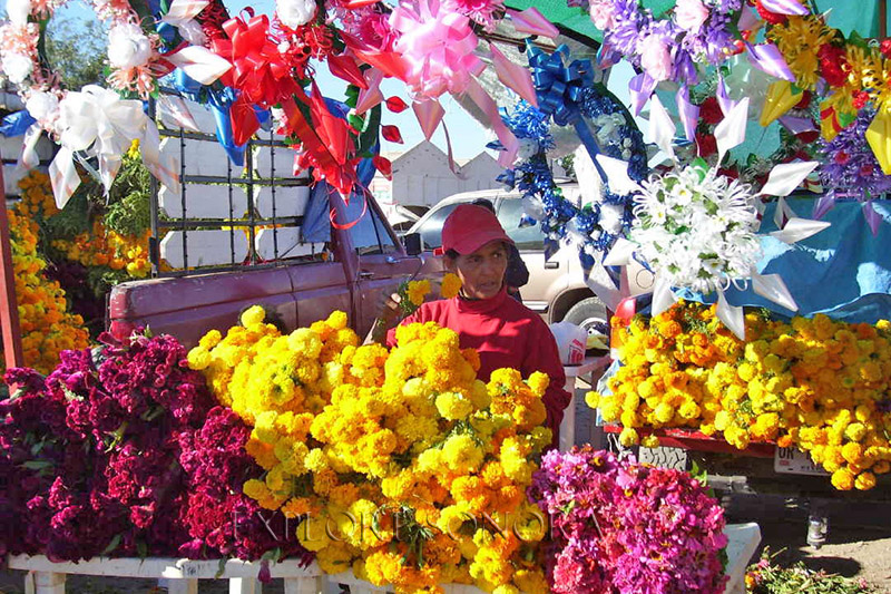 Selling flowers outside of the panteon municipal