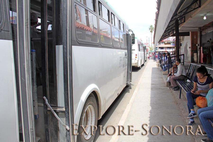 An Une bus stop outside the Mercado Municipal in Navojoa