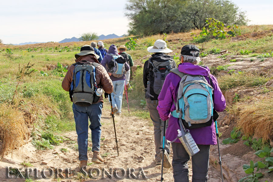 Hiking to petroglyph sites in Northern Sonora, Mexico