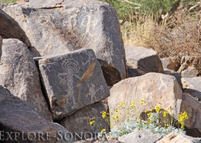Rock art petroglyphs near Caborca, Sonora, Mexico