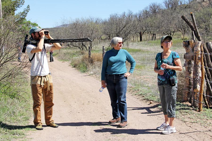 Ambos Tours - a birding tour in San Lazaro, Sonora
