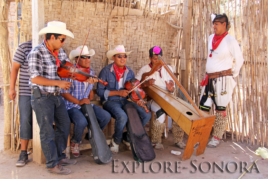 Sonora Mayo Pascola dancers and musicians