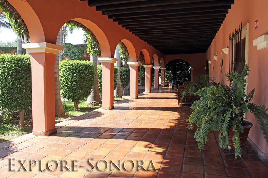 Hacienda Las Cazadores in Navojoa, Sonora, Mexico