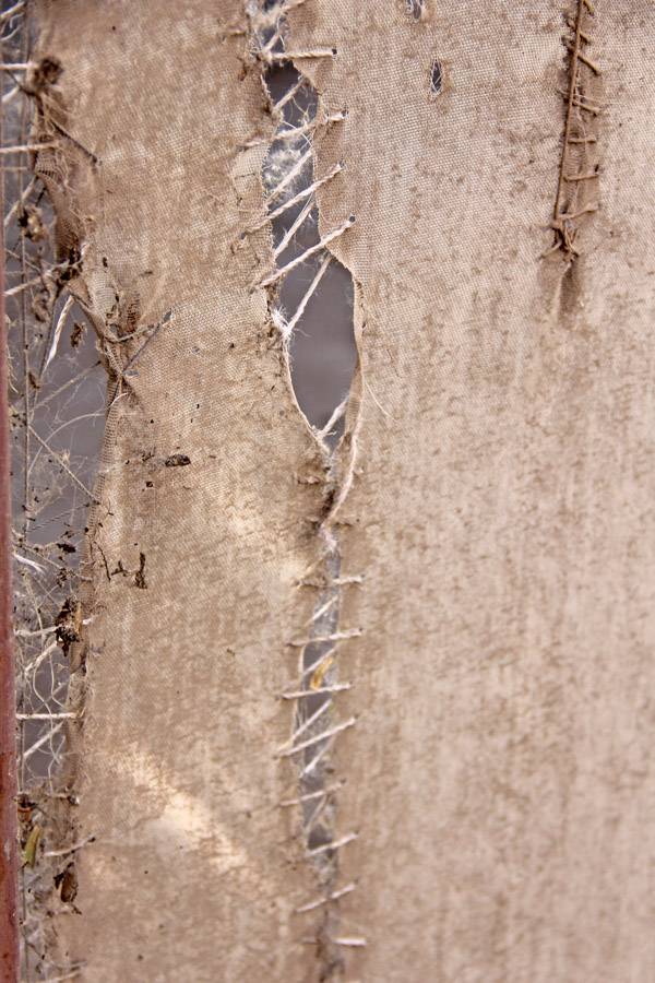 Damage from the break-in at the cuatro espejos butterfly conservatory in El Jupare, Sonora, Mexico