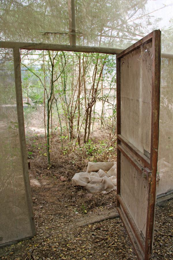 The cuatro espejos butterfly conservatory in El Jupare, Sonora, Mexico