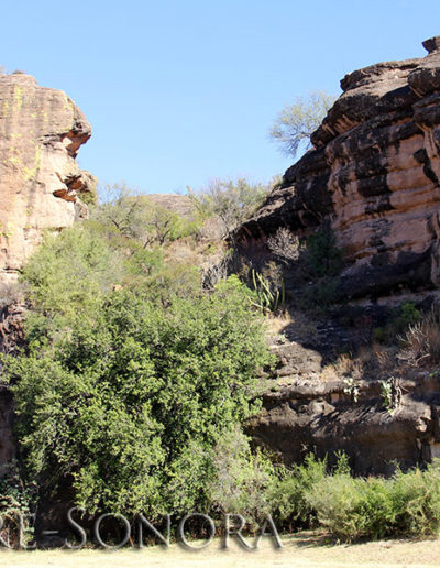 """The """"Cara de Indio"""" (Indian Face) rock formation near the Northern Sonora town of Cucurpe, Sonora, Mexico"""